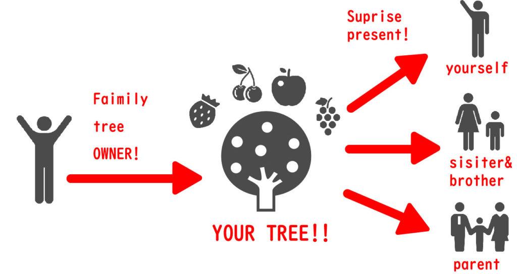 記念樹選びなら、樹のオーナーサイト「家族の樹」 | 家族の樹、サービスの流れ